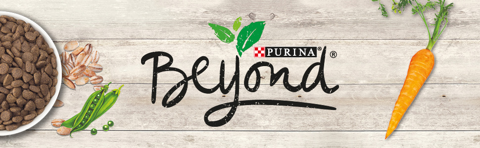 Purina Beyond Dry Dog