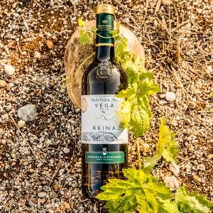 vino blanco verdejo, vega reina, verdejo, mejor vino blanco del mundo