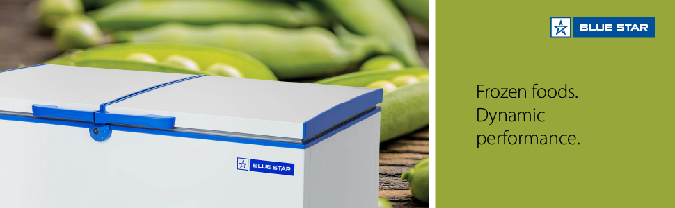 Blue Star CHF500 Double Door Deep Freezer (484 L, White)