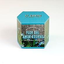 Huerto urbano, semillas, regalo, original, sostenible, natural, amigo invisible, DIY, cultivo