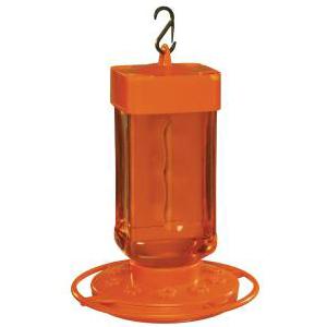 oriole, oriole feeder, attract oriole, outdoor feeder, hanging oriole feeder