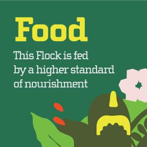 food yellowbird