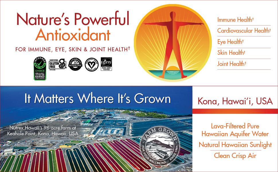 antioxidant grown kona hawaii USA immune eye skin joint health