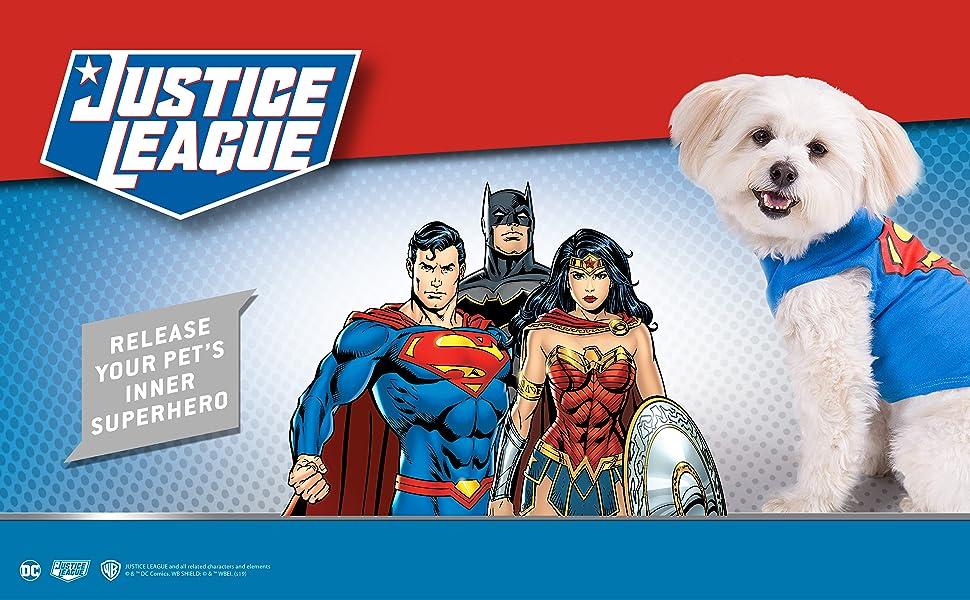 DC Comics Pet for Pets