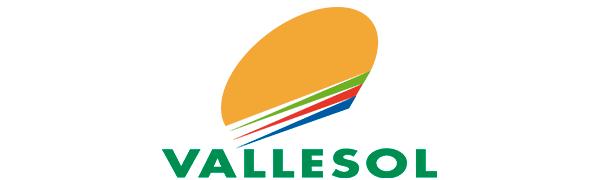 logo_vallesol_