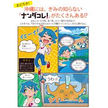 沖縄には、きみの知らない「ナンダコレ!」がたくさんある!?