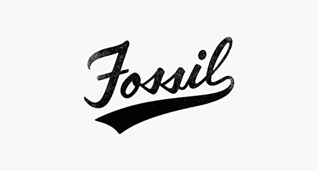 Fossil About Us