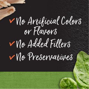 No artificial Colors, Flavors, No added fillers, No Preservatives, Good Dog Food, Healthy Dog