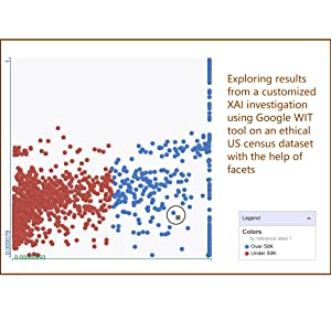 exploring results from a customized XAI investigation using Google WIT tool
