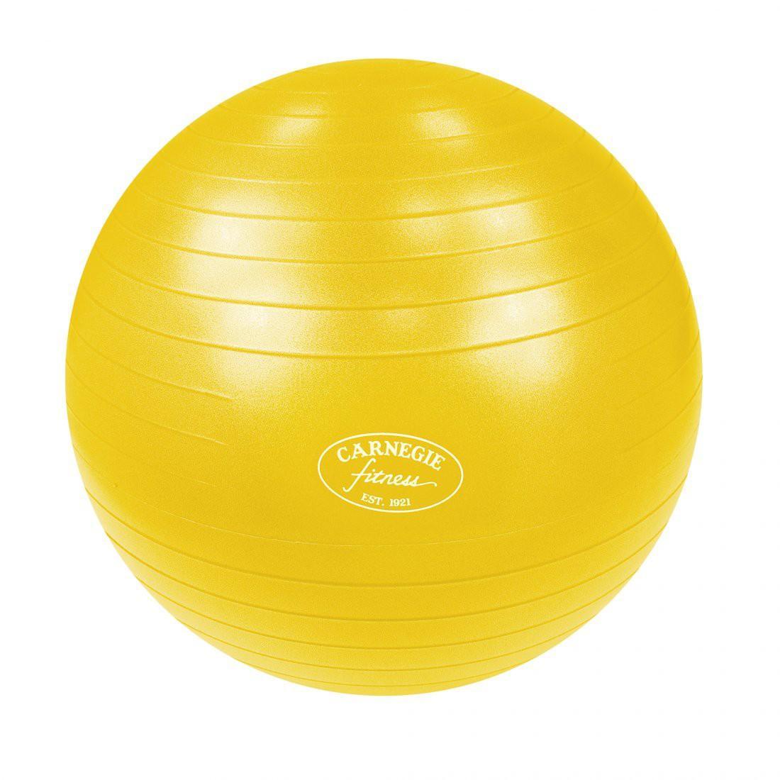 Gymnastikball Ø 65 cm Massageball Fitnessball Sitzball 300 kg Pumpe
