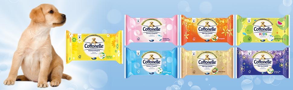 12 x 42 Tücher Cottonelle Feuchtes Toilettenpapier Clean Comfort Baumwollduft