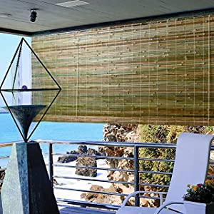 Reed amp; Bamboo