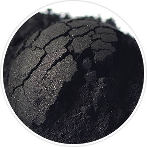 Gemmaz Activated Charcoal Teeth Whitening Powder