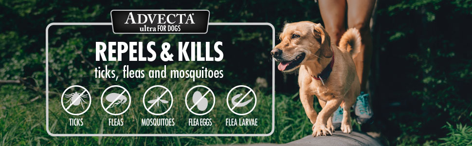 Repels ticks, fleas and mosquitoes