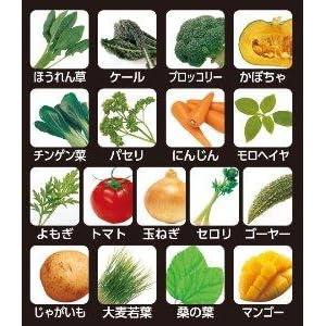 ほうれん草 ケール ブロッコリー チンゲン菜 パセリ モロヘイヤ よもぎ トマト 玉ねぎ セロリ ゴーヤ じゃがいも 大麦若葉 マンゴー グリーンスムージー グリーンチャージ