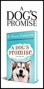 a dog's promise, dogs promise, book, novel, dogs journey series, bruce cameron, dvd, bluray, family