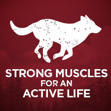 Strong muscles for an active life