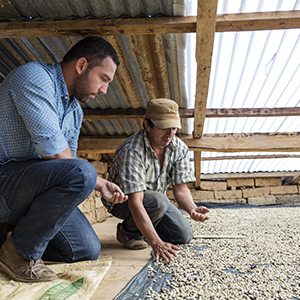 Farmer connected sourcing