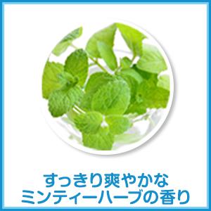 洗濯洗剤「トップ HYGIA(ハイジア)」はすっきり爽やかなミンティーハーブの香り