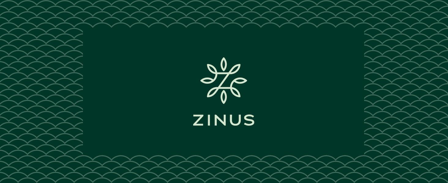 Amazon Com Zinus 12 Inch Gel Infused Green Tea Memory
