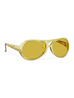 party shades sun glasses