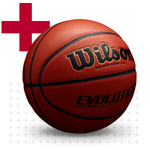 official basketball; official size basketball; 29.5 basketball; official ball; 29.5 wilson evolution