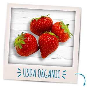 Nourish your little one with the organic goodness of yogurt & real fruit