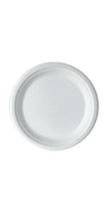 Sugarcane Plate