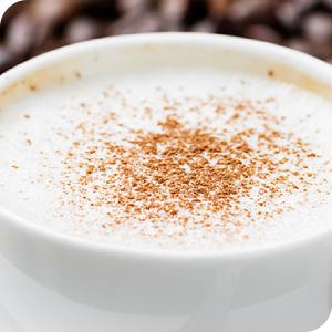 zelmer; ekspres do kawy; ZCM7255;dysza spieniajaca do cappucion
