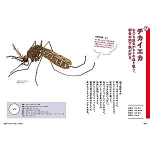 あなたは嫌いかもしれないけど、とってもおもしろい蚊の話