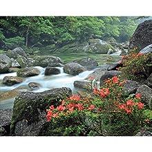 世界自然遺産 日本編