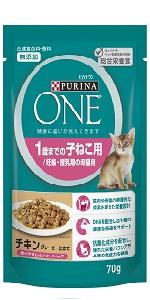 OWC kitten