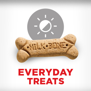 Everyday Treats
