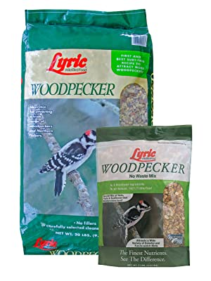 lyric, bird seed, bird food, lyric bird seed, wild bird seed, woodpecker food, woodpecker feeder