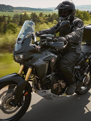 Cruiser Cushion Motorcycle