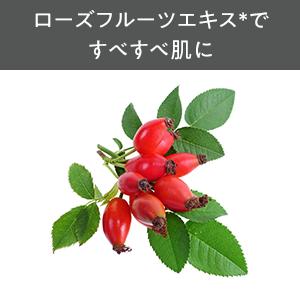 ローズフルーツエキス,ノイバラ果実エキス,うるおい成分,保湿成分