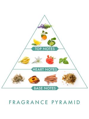 Wild Stone Hydra Energy Spray Perfume