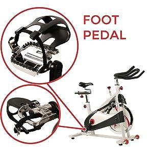 Amazon.com : Sunny Health & Fitness Spin Bike Indoor