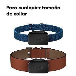 Invoxia Pet Tracker, rastreador GPS perros, localizador gatos, Collar GPS mascotas, collar