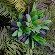 Maia Shop Jardín Vertical, Ideal para Decoración del Hogar u Oficina, Diseño de Espacios, Árbol, Flor, Planta Artificial (40 x 40 cm): Amazon.es: Hogar