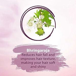 Bhringaraja