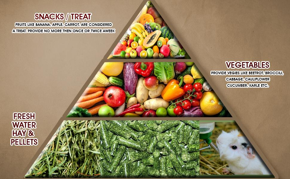 Boltz guinea pig diet