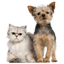robot, aspirador, roomba, limpieza, hogar, inteligente, mascotas, perros, gatos, pelos, alergia