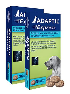 ADAPTIL Express Tabletten, 10 Stück