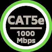 Exceeds CAT5e Standards