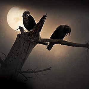 Odin, corvos