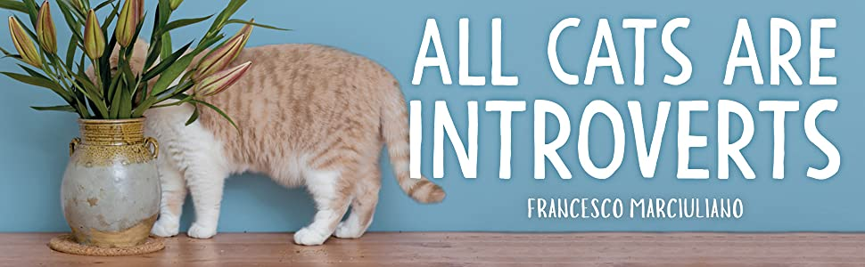 All Cats Are Introverts Marciuliano Francesco 9781449495633