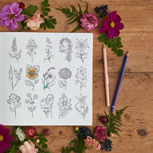 Amazon.com: World of Flowers: A Coloring Book and Floral