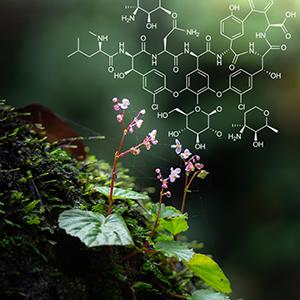 Chemistry amp; Nature