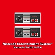 Amazon.com: Nintendo Switch Online 12-Month Individual ...